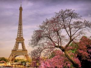 Ypatingas pasiūlymas kelionei autobusu į pavasariškąjį Paryžių!