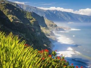 Paskutinės minutės pasiūlymai į Madeirą!